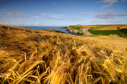 VAT Refund Boost for Farmers