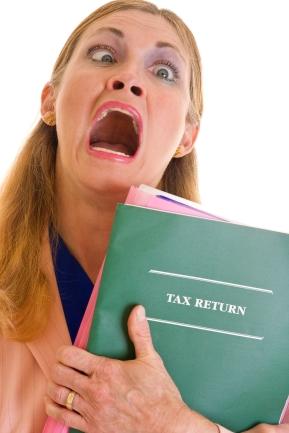 2013 Form 11 Tax Return now online